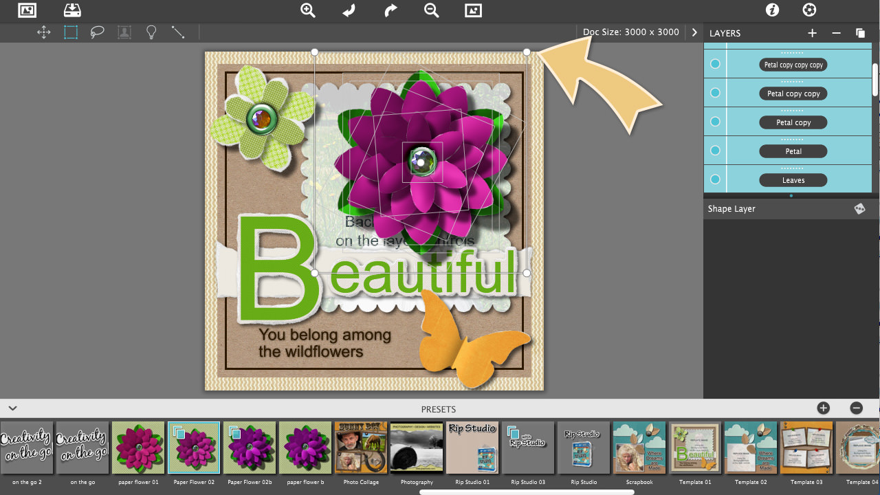 Here Is The Template With Your Newly Made Paperflower Rip Studio Create A  Paper Flower How
